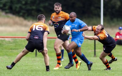 ALL GOLDS WELL BEATEN BY NINE-TRY TIGERS